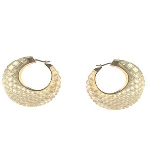 CELINE BY PHOEBE PHILO LUCITE HOOP EARRINGS